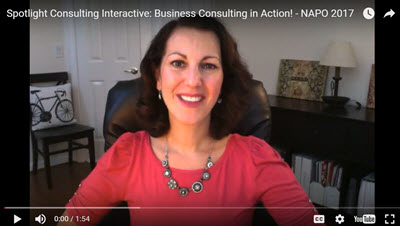 """Come Join Me in Pittsburgh for the """"Spotlight Consulting Interactive: Business Consulting in Action"""" Session at the NAPO 2017 Conference"""